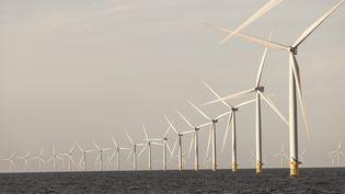 Le parc éolien offshore Anholt au large des côtes danoises (MAXPPP)