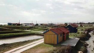 Sur l'île d'Oléron (Charente-Maritime), le village de Fort-Royer et ses cabanes colorées offrent des paysages de carte postale. La vie du site ostréicole continue, malgré l'absence des touristes. (France 3)