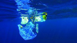 Pollution marine, illustration. (FOTOLIA)