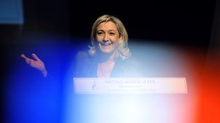 La présidente du Front national Marine Le Pen lors d'un meeting à La Rochelle, le 28 janvier 2014. (XAVIER LEOTY / AFP)