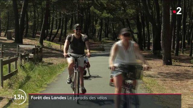 Vacances en forêt : la Vélodyssée, la plus longue piste de vélo française