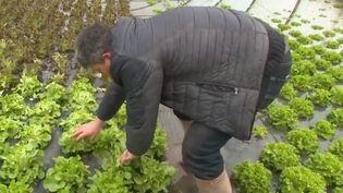 agriculteur crue (FRANCE 2)
