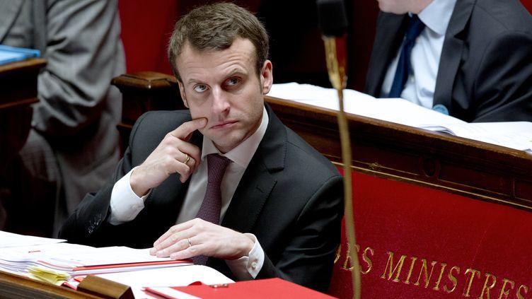 Emmanuel Macron, samedi 14 février 2015 à l'Assemblée nationale, à Paris. (ALAIN JOCARD / AFP)