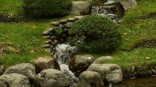 Patrimoine : à la découverte du fabuleux jardin d'Albert Kahn (France 3)