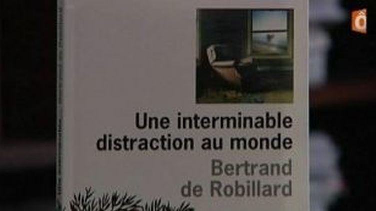 Une interminable distraction au monde, le nouveau roman de Bertrand de Robillard  (Culturebox)
