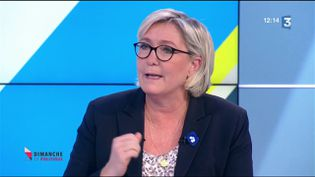 MLP (CAPTURE D'ÉCRAN FRANCE 3)