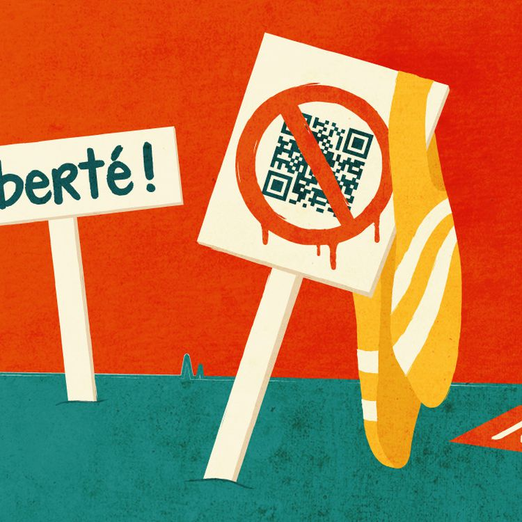 """Des """"gilets jaunes"""" sont présents dans la rue depuis le début des manifestations contre le pass sanitaire. (ELLEN LOZON / FRANCEINFO)"""