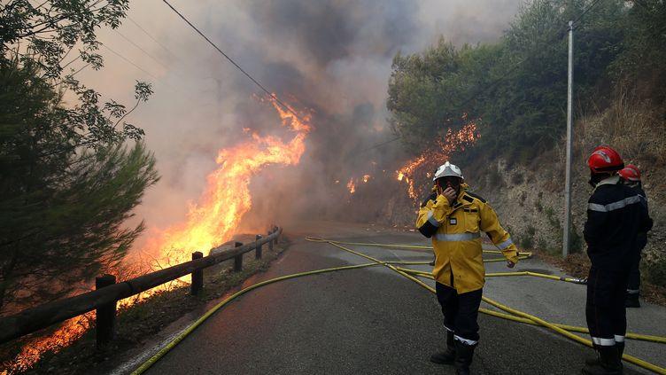 Des pompiers combattent les flammes près de Castagniers (Alpes-Maritimes), le 17 juillet 2017. (MAXPPP)