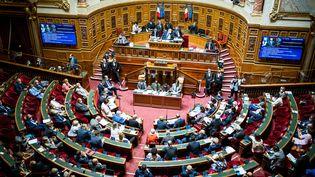 L'hémicycle du Sénat, le 21 juillet 2021 à Paris. (XOSE BOUZAS / HANS LUCAS / AFP)