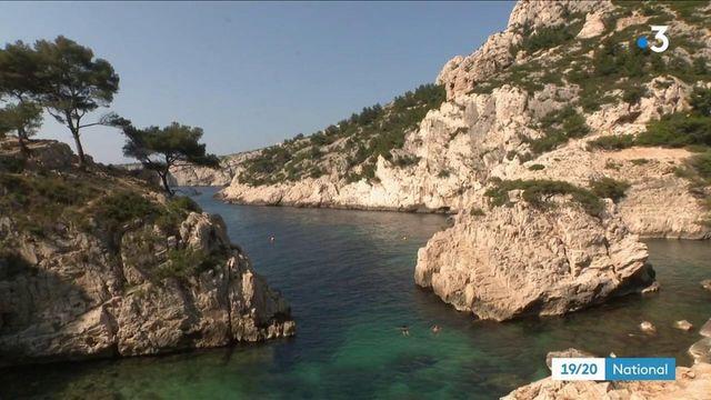 Marseille : le tourisme de masse inquiète les habitants