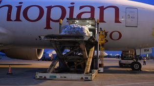 La compagnie Ethiopian Airlines tente de survivre grâce au fret en organisant quelques vols-cargos. (ZOU LE / IMAGINECHINA)