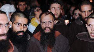 Une centaine de catholiques intégristes ont manifesté près du théâtre de la Garonne  (ERIC CABANIS / AFP)