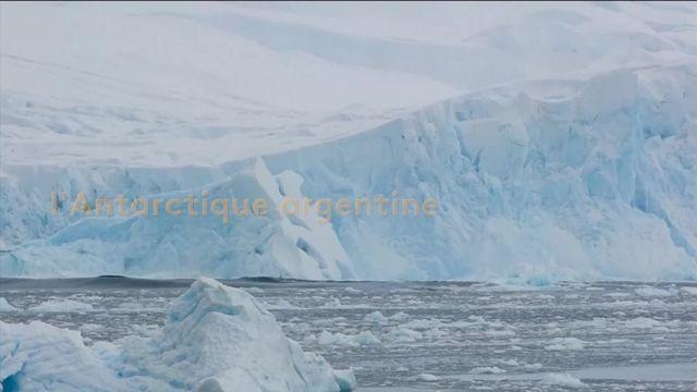 6media ANTARCTIQUE-RecordTemperature