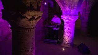 Un collectif de jeunes artistes de la scène marnaise organise des live dans les lieux atypiques du patrimoine de la ville (France 3)