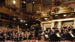 Le Concert du Nouvel An 2013 à Vienne  (Ronald Zak/AP/SIPA)