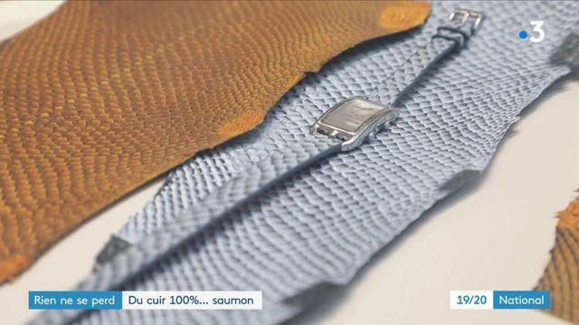 Innovation : des cuirs créés à partir de peaux de poisson