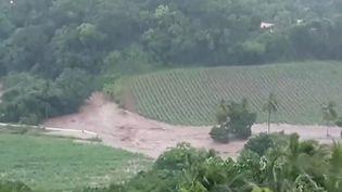Les habitants de la Martinique font face, mercredi 28 août, aux conséquences du passage de la tempête tropicale Dorian, qui a provoqué plusieurs inondations. (CAPTURE ECRAN FRANCE 2)