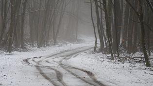 Des chutes de neige dans la région de Thionville (Moselle), le 12 janvier 2021. (MAXPPP)