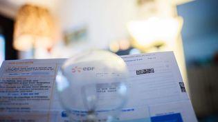Les tarifs réglementés de l'électricité baissent à partir du 1er août 2016, pour les particuliers et les professionnels. (MAXPPP)
