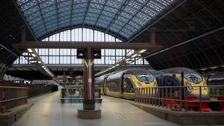Des trains Eurostar dans la gare de Saint-Pacras, à Londres (Royaume-Uni), le 21 décembre 2020. (NIKLAS HALLE'N / AFP)