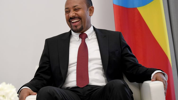 Abiy Ahmed, le 28 janvier 2019 en Ethiopie à Addis Abeba. (BRITTA PEDERSEN / DPA)