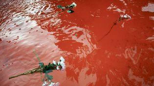 Des fleurs blanches ont été jetées, le 31 juillet 2019, dans la fontaine publique nantaise dont l'eau a été colorée en rouge après l'annonce de la mort de Steve Maia Caniço. (ALAIN PITTON / AFP)