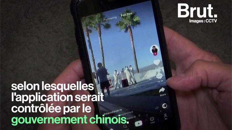 VIDEO. Interdiction de TikTok : quels sont les pays en guerre contre l'application ? (BRUT)