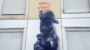 Le street art prend ses quartiers à Lyon avec des performances dans la rue et une exposition au musée d'art contemporain  (Olivier Flandin)