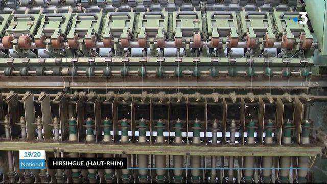 Industrie : le lin est de nouveau produit en France