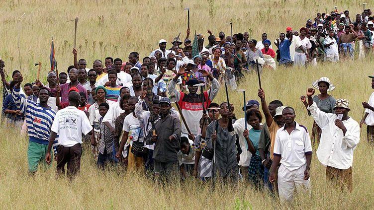 Occupation de fermes au Zimbabwe, dans le cadre de la réforme agraire. (CRÉDITALEXANDER JOE / AFP POOL / AFP)