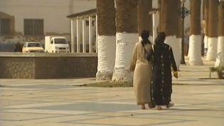 Capture d'écran d'un reportage de France 2 sur l'attitude de la France vis-à-vis de l'Algérie, diffusé le 18 décembre 2012. (FRANCE 2 / FRANCETV INFO)