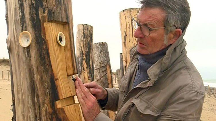 Claude Mayet sculpte les brise-lames de Brainville-sur-Mer  (France 3 capture d'écran)