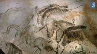 Grotte Chauvet : en 3D au cinéma et dans un cabinet de géomètre isérois  (Culturebox)