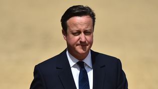 David Cameron, le Premier ministre britannique, assiste à des commémorations de la victoire des alliés en 1945, le 10 mai 2015. (BEN STANSALL / AFP)