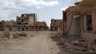 Les quartiers résidentiels de la ville de Palmyre ont été fuis par la quasi totalité des habitants, comme le montre cette photo prise dimanche 27 mars 2016. Les raids aériens ont précédé la reprise de la cité antique par l'armée de Bachar Al Assad appuyée par les Russes. (STR / AFP)