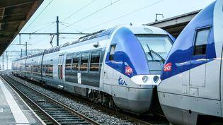 Trains TER stationnés en gare. (MAXPPP)