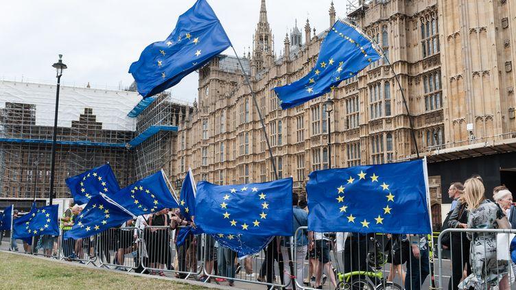 Des opposants au Brexit manifestent devant le Parlement, le 28 août 2019, à Londres. (WIKTOR SZYMANOWICZ / NURPHOTO / AFP)