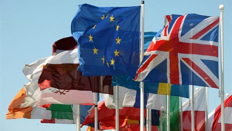Les drapeaux des pays européens devant le Parlement de l'UE, à Bruxelles. (AFP PHOTO/GERARD CERLES)