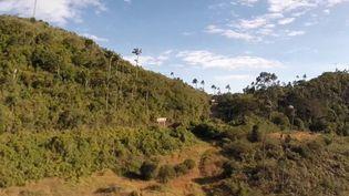 Cette semaine, direction la Colombie pour découvrir un pays devenu prisé par les touristes. (France 2)
