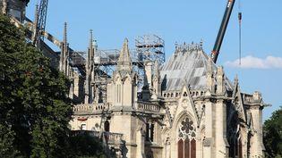 Le chantier de la cathédrale Notre-Dame à Paris le 6 juillet 2019. (JAKUB PORZYCKI / NURPHOTO / AFP)