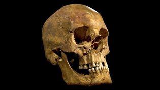 Le crâne de Richard III (1452-1485)  (AP / University of Leicester / Sipa)