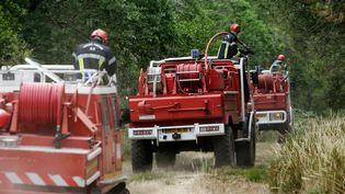 Des pompiers lors d'un exercice de prévention des feux de forêts (JEAN-PIERRE MULLER / AFP)