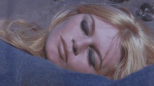 Bardot arrête son cinéma  (Léonard de Raémy / capture d'écran)