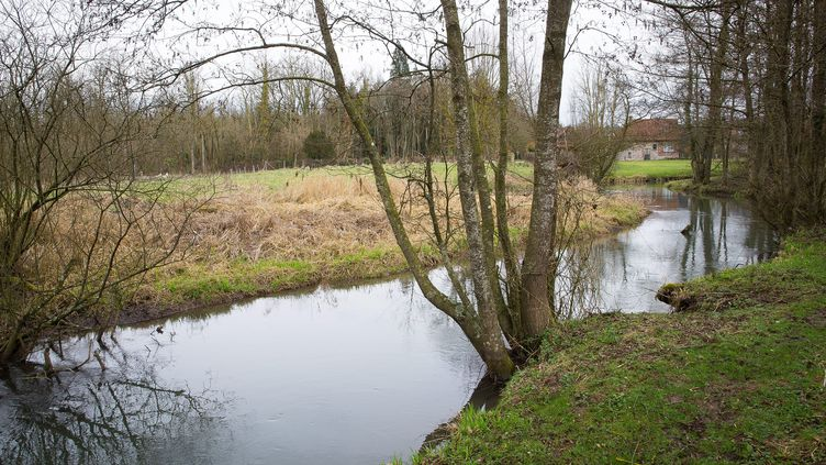 La Canche, ici à un niveau normal en 2017 à Ligny-sur-Canche (Pas-de-Calais), est en crue depuis le 10 mars 2020. (MAXPPP)