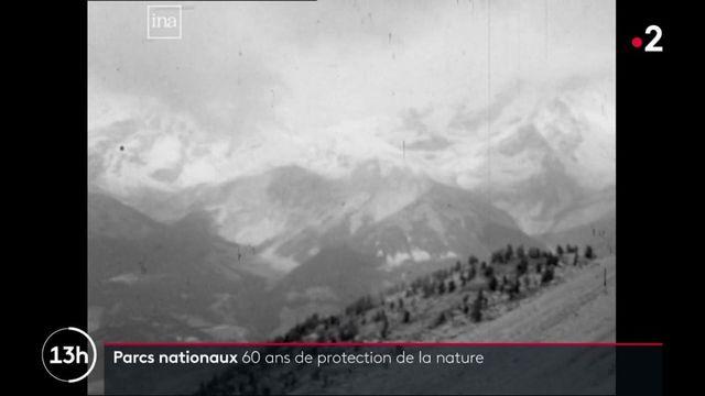 Les parcs nationaux protègent la nature depuis 60 ans
