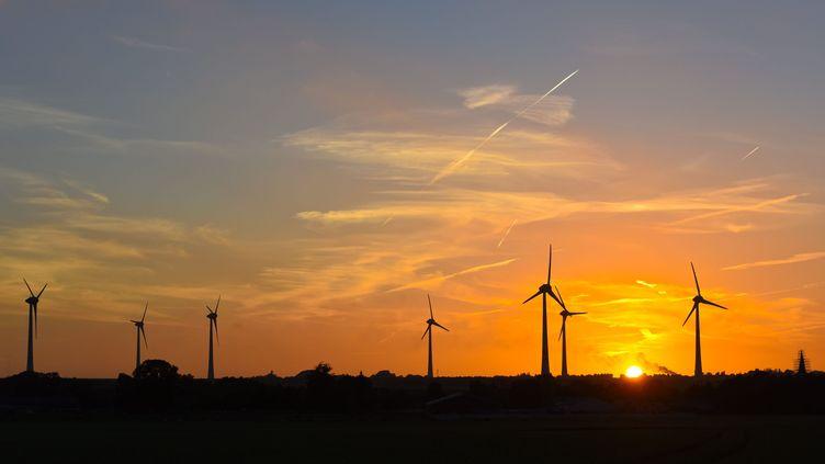 Un champ d'éoliennes (image d'illustration). (JEAN-LUC FL?MAL / MAXPPP)