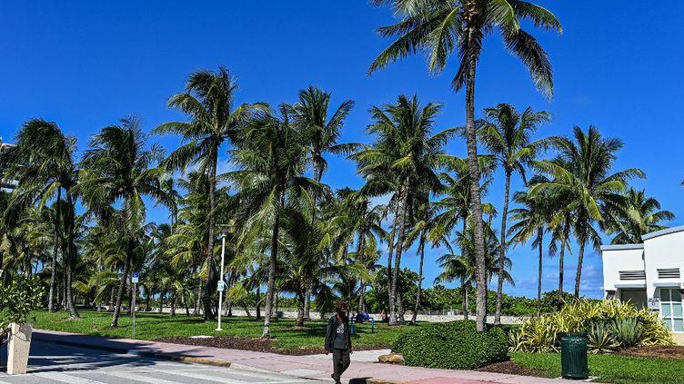 Miami Beach, en Floride, le 30 août 2021. La police américaine a annoncé avoir résolu trois meurtres de jeunes femmes commis il y a une vingtaine d'années en Floride. (CHANDAN KHANNA / AFP)