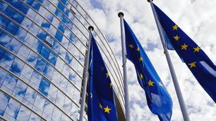 Depuis le Parlement de Strasbourg, nous vous proposons une émission spéciale entièrement consacrée aux «fake news»: autour de Caroline de Camaret, débat entre Jean - Marie CAVADA, Député européen, Libéraux et Démocrates (France), Sven GIEGOLD, Députéeuropéen, Les verts (Allemagne). Quant au Porte-parole du Parlement, Jaume Duch, il s'inquiète d'une profusion de fausses nouvelles en amont des élections européennes de 2019. (FRANCE 24)