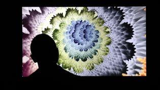 Un homme observe uneœuvre numérique NFT le 25 mars 2021 à New York, à la galerie Superchief dédiée aux NFT. (JASON SZENES / EPA / MAXPPP)