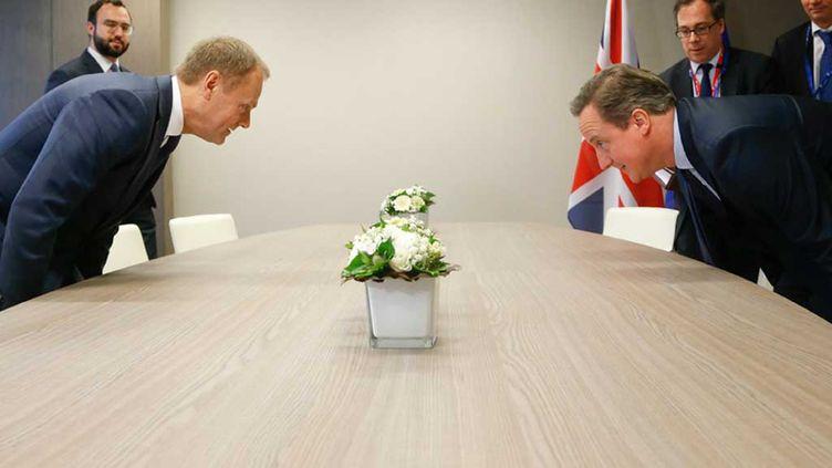 (Le Premier ministre David Cameron et le président du Conseil européen Donald Tusk lors des pourparlers ce jeudi à Bruxelles  © Reuters)